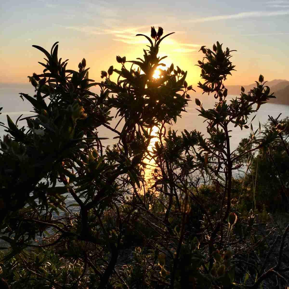 Meer oberhalb Bonassola